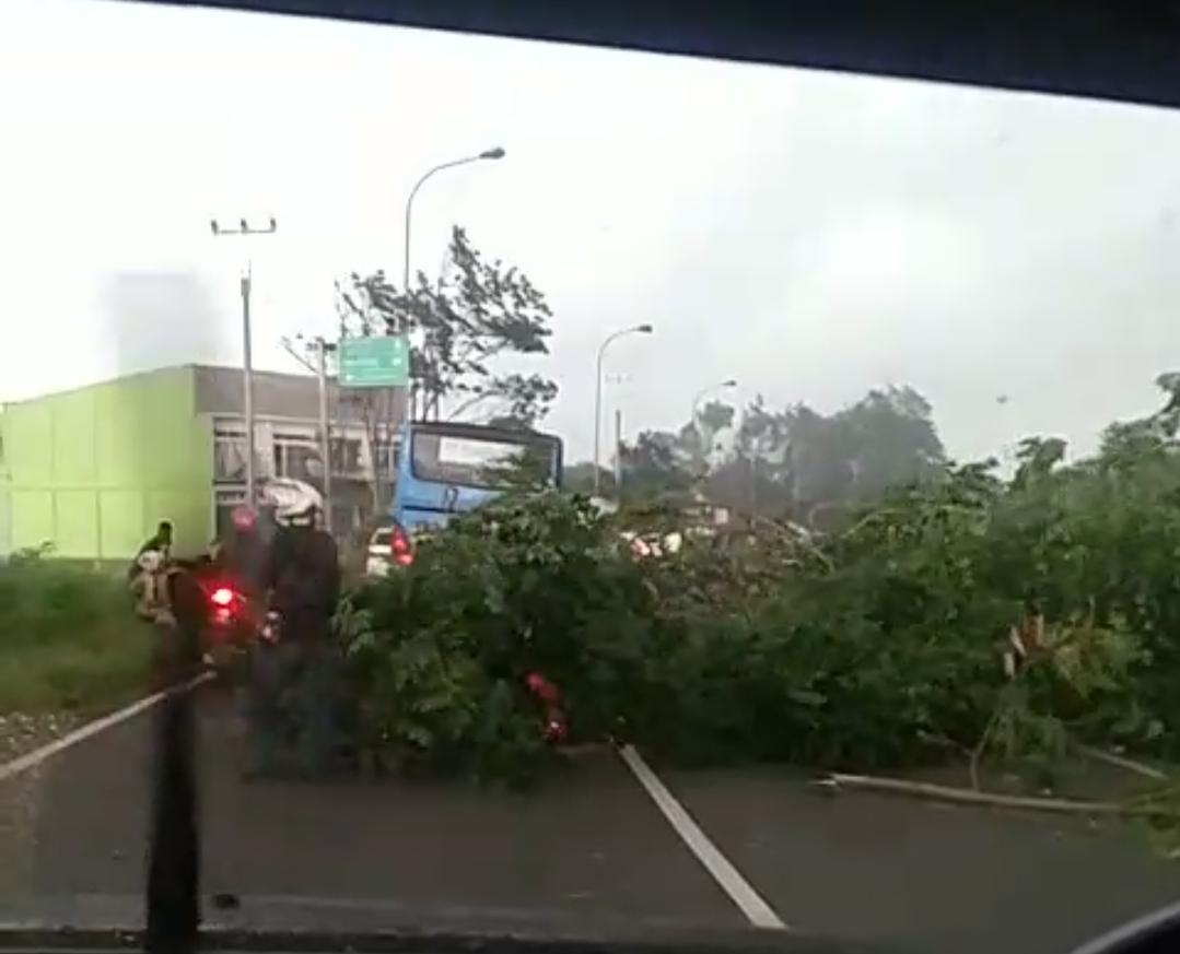 Hujan Disertai Angin Kencang Terjang Wilayah Cianjur
